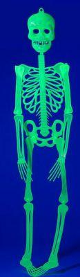 Halloween - Skelett - grün fluoreszierend