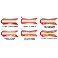 Pulsoximeter / Vascular-Check Kombigerät
